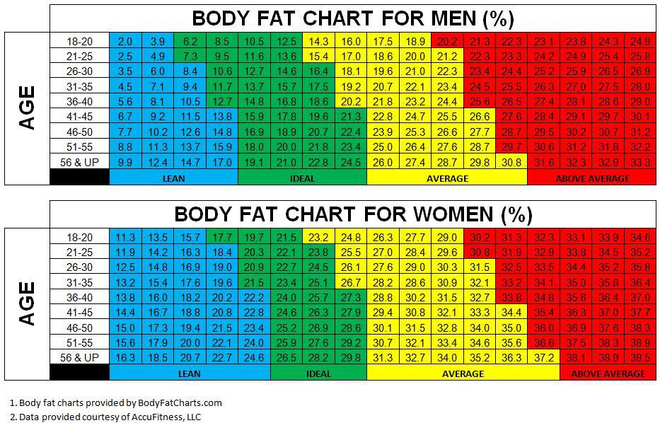 Zawartość tkanki tłuszczowej - tabela
