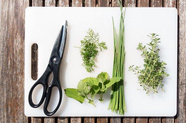 Dieta oczyszczająca i wzmacniająca - zioła na przesilenie wiosenne
