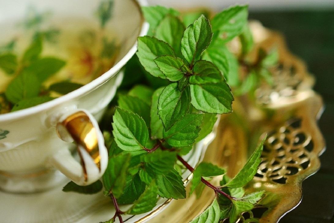 Na płaski brzuch bardzo pomaga herbata z mięty